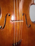 Cello_strung_gut