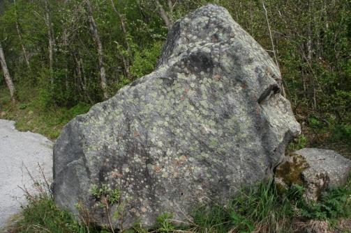 Rock Face!