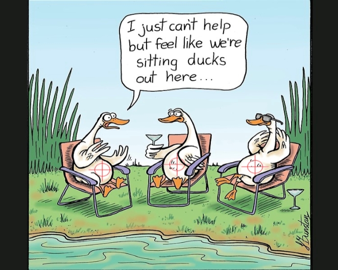 sitting ducks - in my sights.jpg